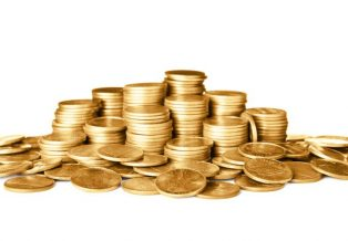 2013 India Gold Sovereign Coin Overview