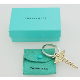 e6c3210d7 Tiffany & Co Sterling Silver Medical Doctor Caduceus Key Ring Keychain Box  Pouch